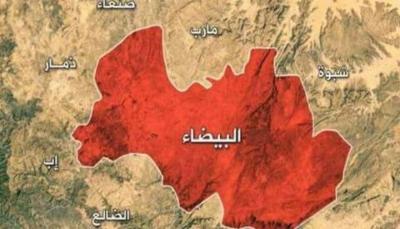 البيضاء.. القوات الحكومية تحرر مواقع جديدة في جبهة نعمان