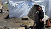 الهجرة الدولية: 4 ملايين يمني أجبروا على الهروب من العنف